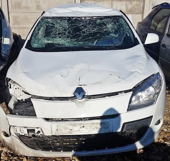 Motor fara anexe - Renault Megane din piese  dezmembrari auto - Poza 1
